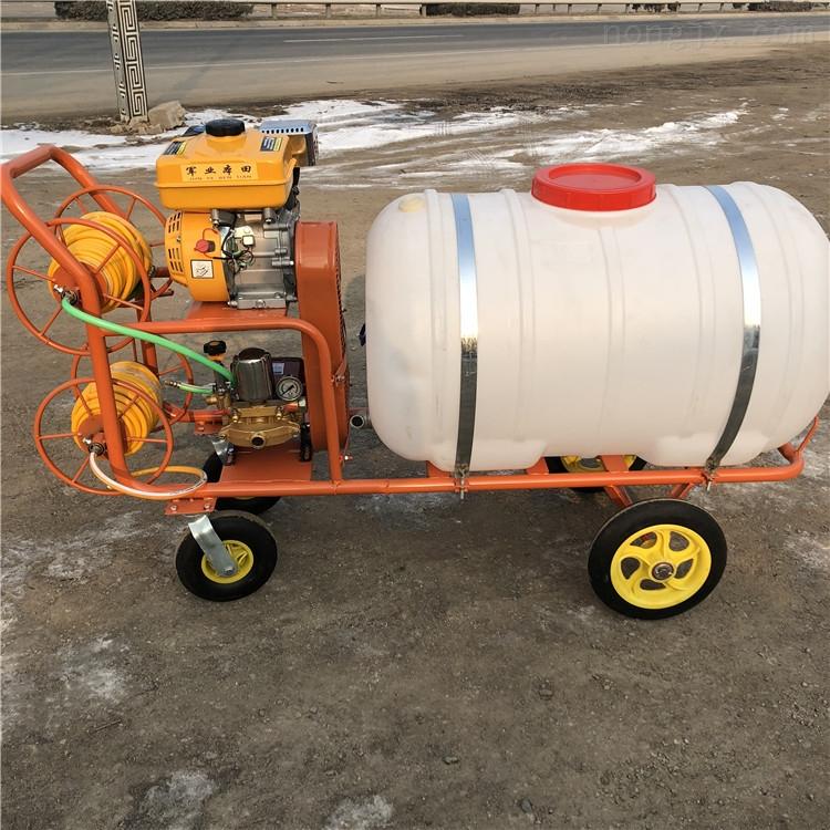 高压动力打药车 蔬菜大棚打药机 高压喷雾器