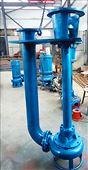 立式泥浆泵 液下搅拌泥沙泵 液下渣浆泵