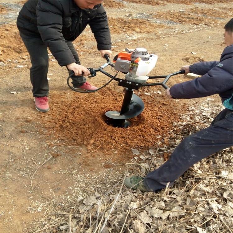 四冲程打坑机 移栽树苗挖坑机 苗圃用刨坑机