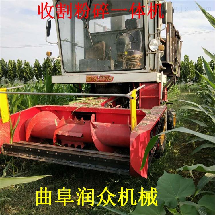 高杆收割粉碎机 牧场青储机 手推稻谷割晒机