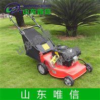 汽油草坪机 除草机用途 农用设备