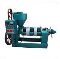 自动温控压榨榨油机