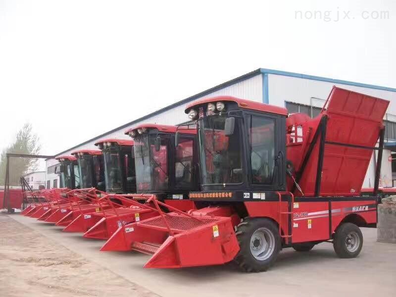 自走式玉米秸秆青储饲料收获机
