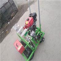汽油手推式中草药蔬菜种子播种机