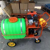 弥漫喷药高压喷雾器 汽油病虫害防治喷药机