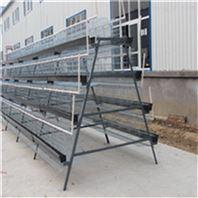 中州牧业阶梯式养殖设备养鸡笼