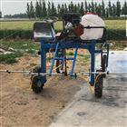 FX-DYJ多档位农用柴油喷药机 三轮风送打药机直销
