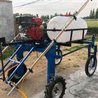 JX-DY三轮柴油农用喷雾器 小型轻便手推式打药机