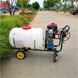 棉花灭虫推车式喷雾器 防疫防虫汽油喷药机