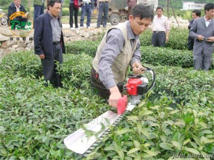 轻便手提式花树修剪机 冬青枝叶修剪绿篱机