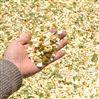 树枝粉碎机枝条粉碎效果树枝树叶切碎片