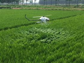 微肥喷洒油动植保无人机