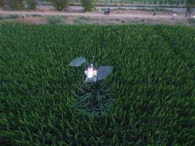 农用无人机 超低空生态农业植保农药喷洒直升机