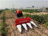 青儲玉米秸稈割曬機 黃豆芝麻自走式收割機