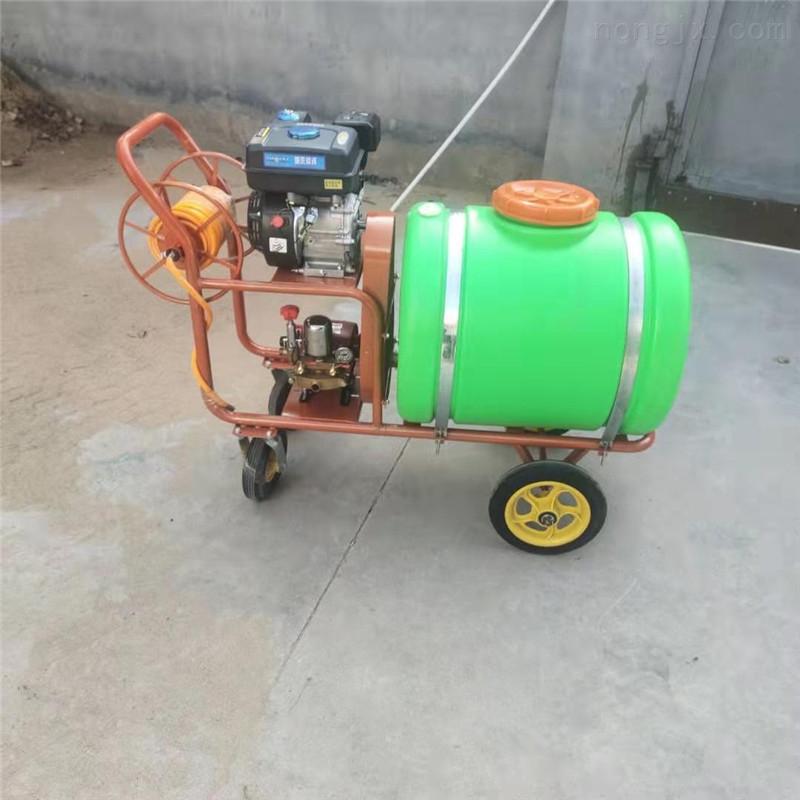养殖杀菌消毒打药喷雾机 农作物汽油喷雾器