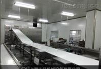 工作台水平皮带输送机