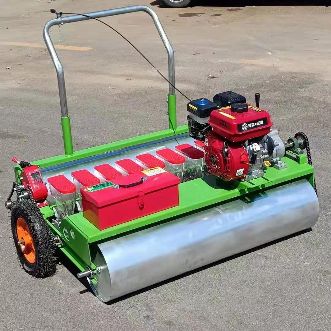RZ-BZ-萝卜人力种植机 汽油自走播种机 白菜精播机