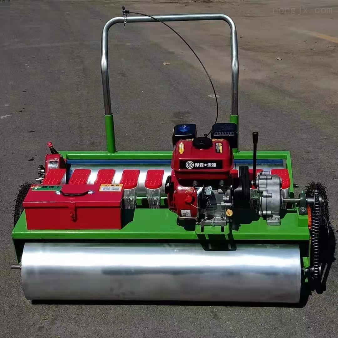 汽油小型播种机 出苗均匀的蔬菜精播机