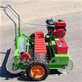 海口種植芹菜播種機 汽油機動力香菜精播機