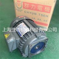 群策S.Y电机C02-43B0 油泵油压电机 1.5KW