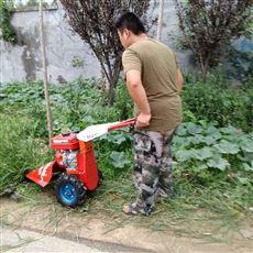 SL JCJ苏州果园专用汽油剪草机