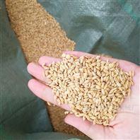 糧食清選機小型苞米碴子篩選機