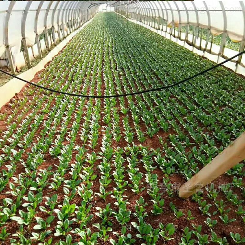 农用大棚香菜专用播种机