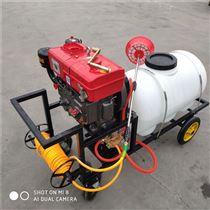 农用柴油高压喷雾器 养殖场手推式打药机