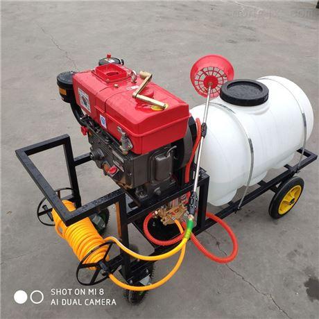 手推式机动喷雾打药机园林机械高压喷雾机