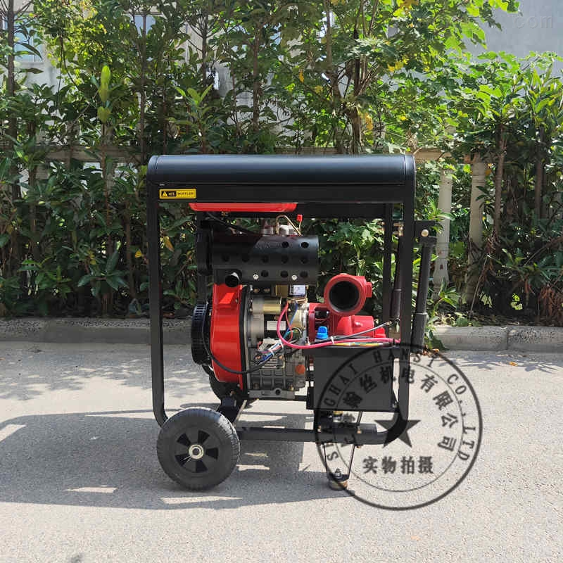 翰丝HS30GP3寸柴油机高压泵
