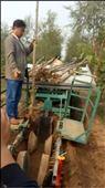 石家庄大型植树机厂家