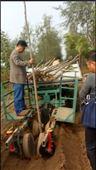 自动植树机