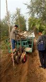 大型园林机械设备自动植树机