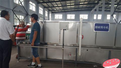 移动方便易于维修就是6xy-2樱桃预冷分选机