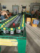 机全自动四川柠檬选果机柠檬分选选果机柠檬筛选