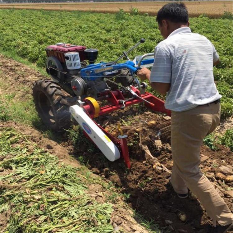 手扶车带土豆挖掘机 地瓜红薯药材收获机