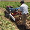 小型地瓜收获机自走式土豆收集机
