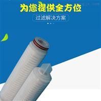 PPH基础款微孔膜食品级PP折叠水滤芯