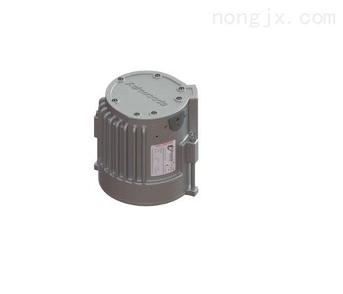 内置式永磁电机