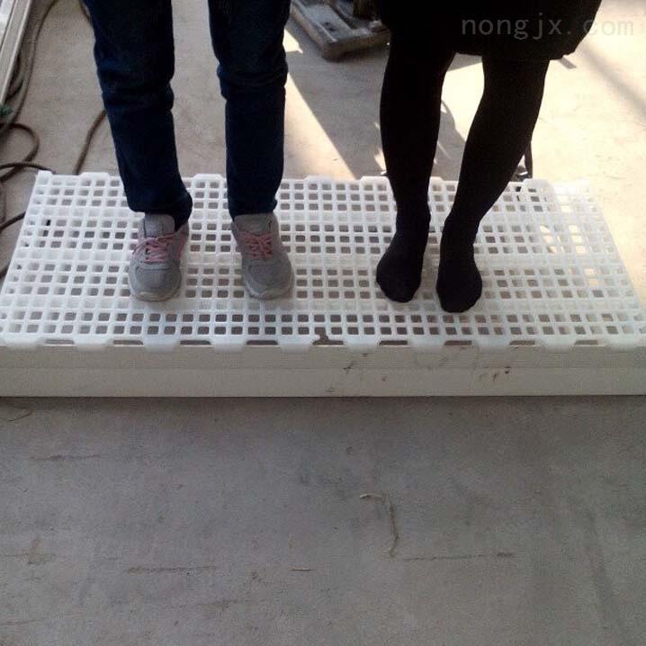 塑料鸭子漏粪地板鸭舍专用漏粪板