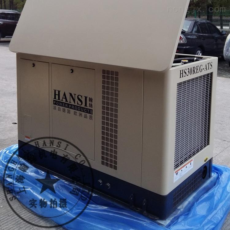 HS30REG-30kw汽油发电机的报价