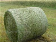 青贮捆草网