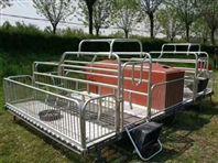 母猪专用产床猪栏位整套批发猪分娩栏