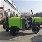 柴油自走式风送喷雾机