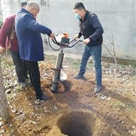 栽树专用6.5马力移苗挖坑机