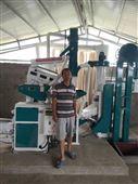 新型組合碾米機米溫低出米率高
