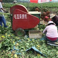 青毛豆采摘机 厂家直销的摘荚机