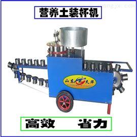 TZB-80大棚种植营养土装杯机