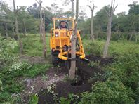 三普履带挖树机-挖树专业机械