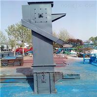 矿粉环链斗提机 煤块板链斗式提升机Lj1